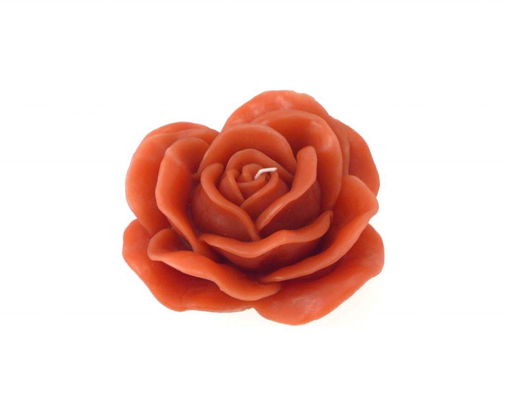 rosa profumata cera rosso